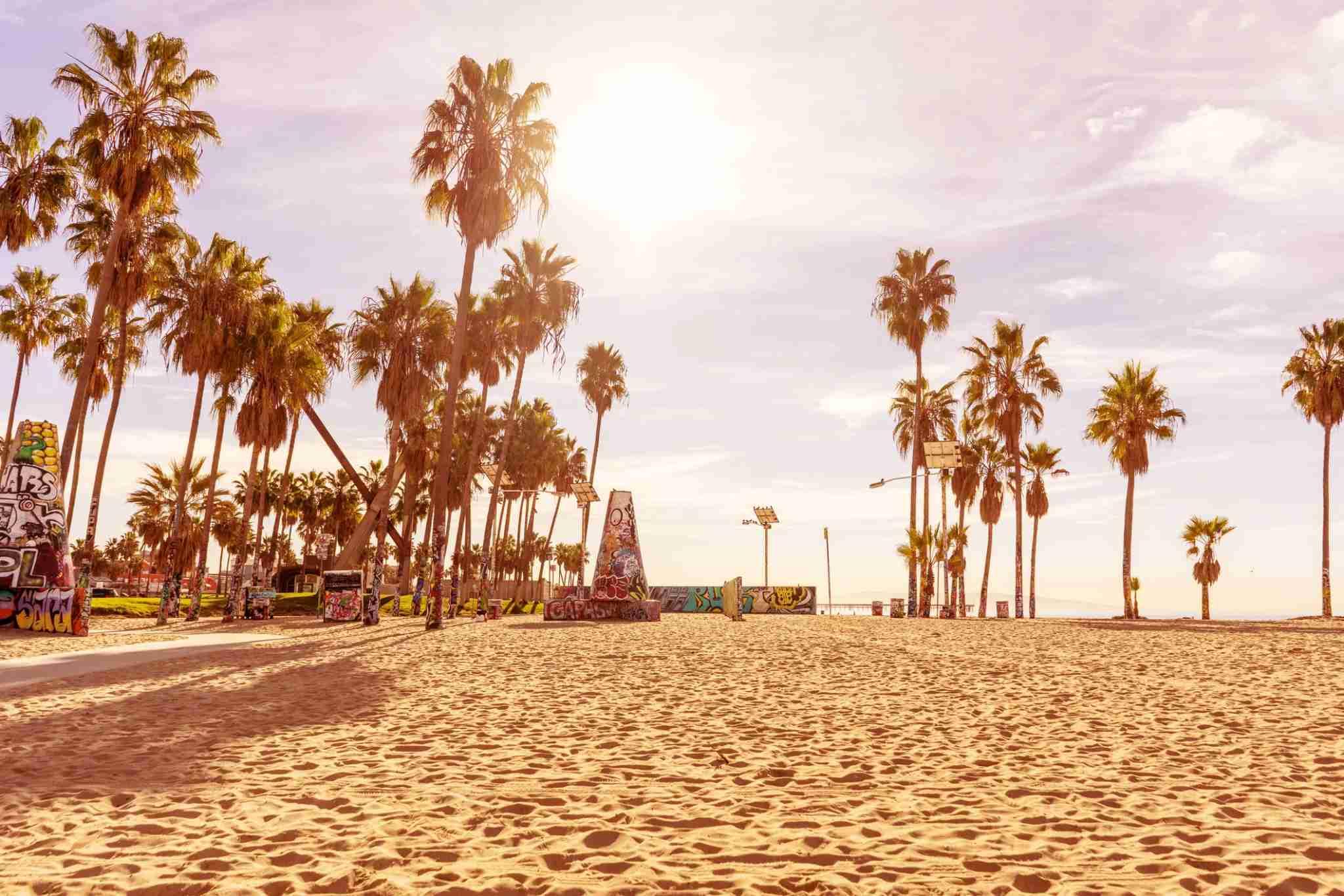 Venice beach in the morning. (Photo courtesy of Yuliia Hrozian)