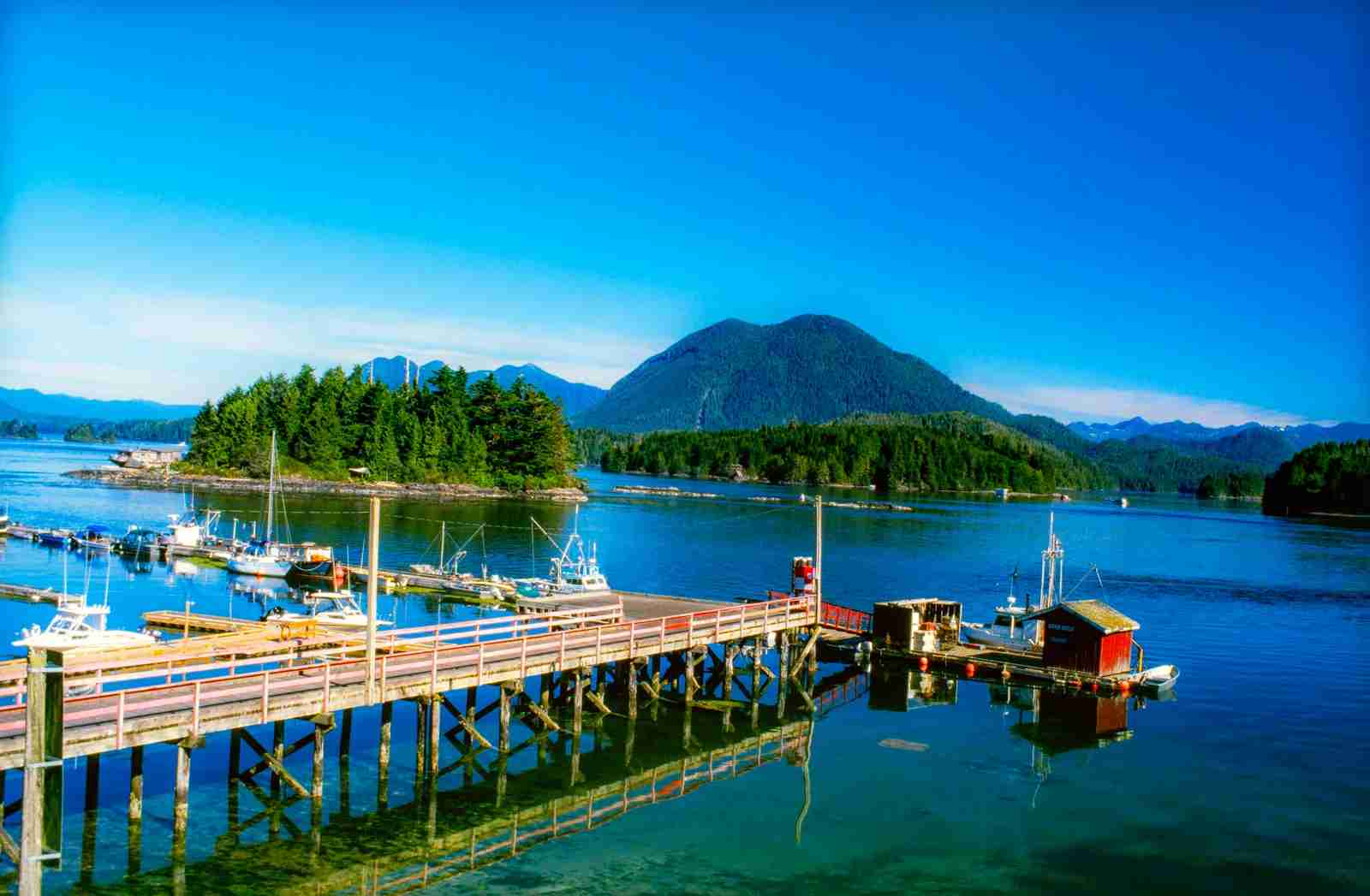 Tofino Harbour on Vancouver Island. (Photo by Pierre Longnus/Getty Images)