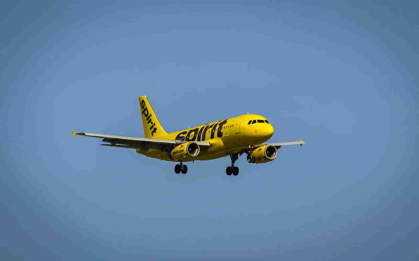 A Spirit Airlines Airbus A319. (Photo courtesy of Spirit)