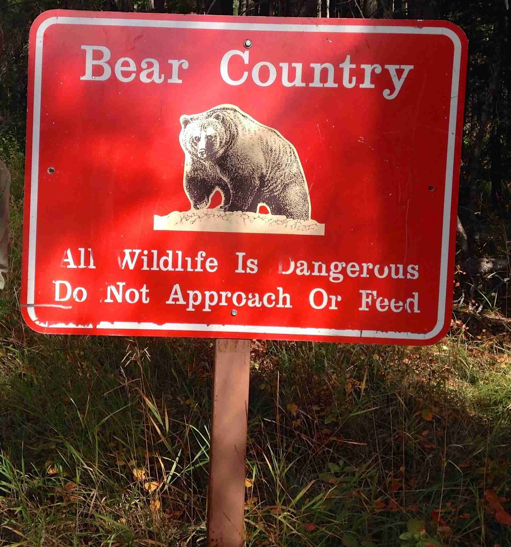 Glacier National Park bear warning sign. September 2014. (Photo by Clint Henderson/The Points Guy)