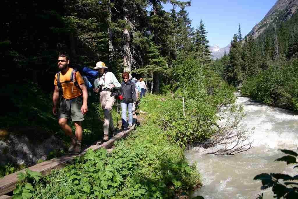 A heli-hiking tour out of the port of Skagway takes passengers to a mountain trail into the Tongass National Forest. (Photo courtesy of Packer Expeditions)