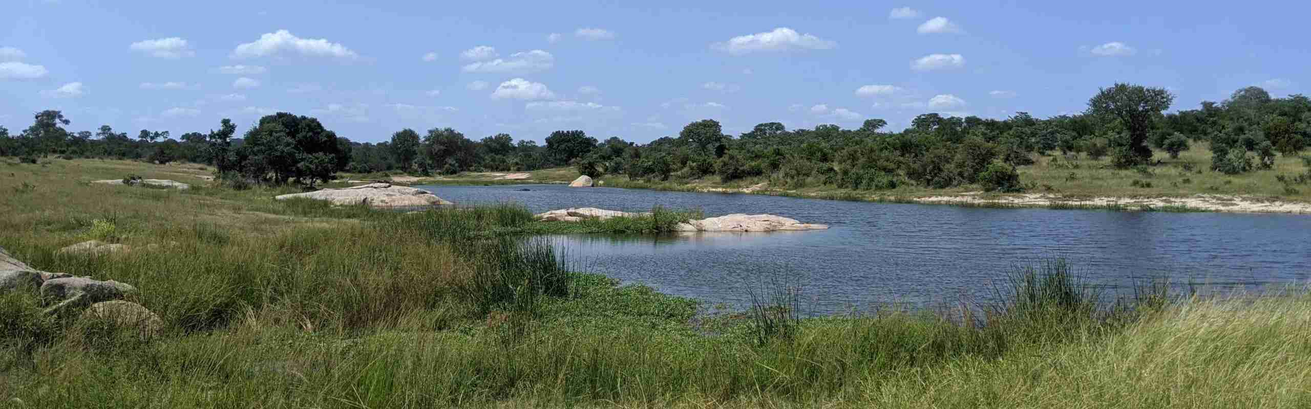 Kruger National Park water hole