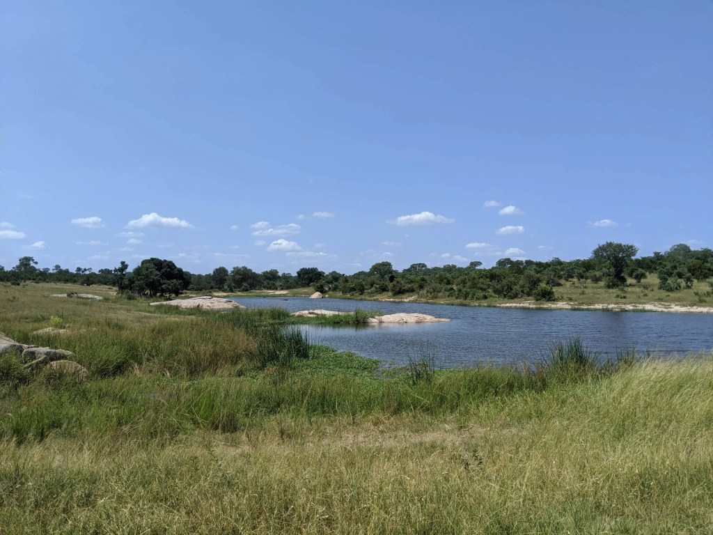 Dreaming of South Africa: How I'm planning to return using points, miles and cash