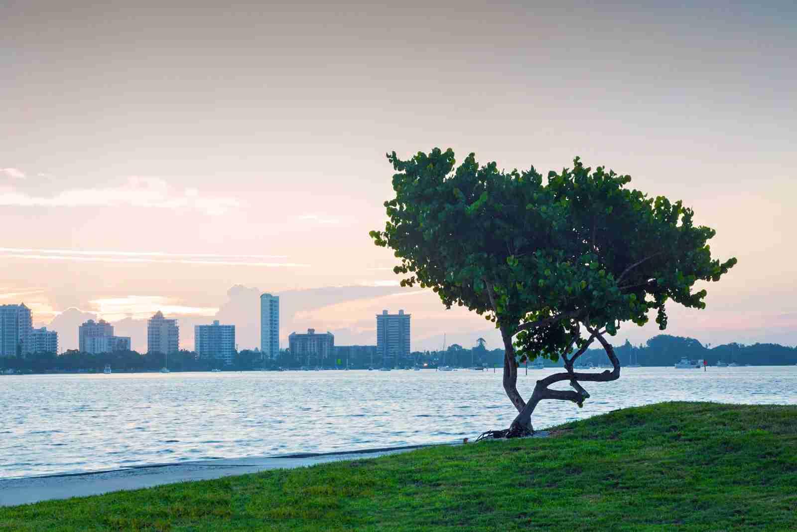 Sarasota, Florida. (Photo by John Coletti/Getty Images)