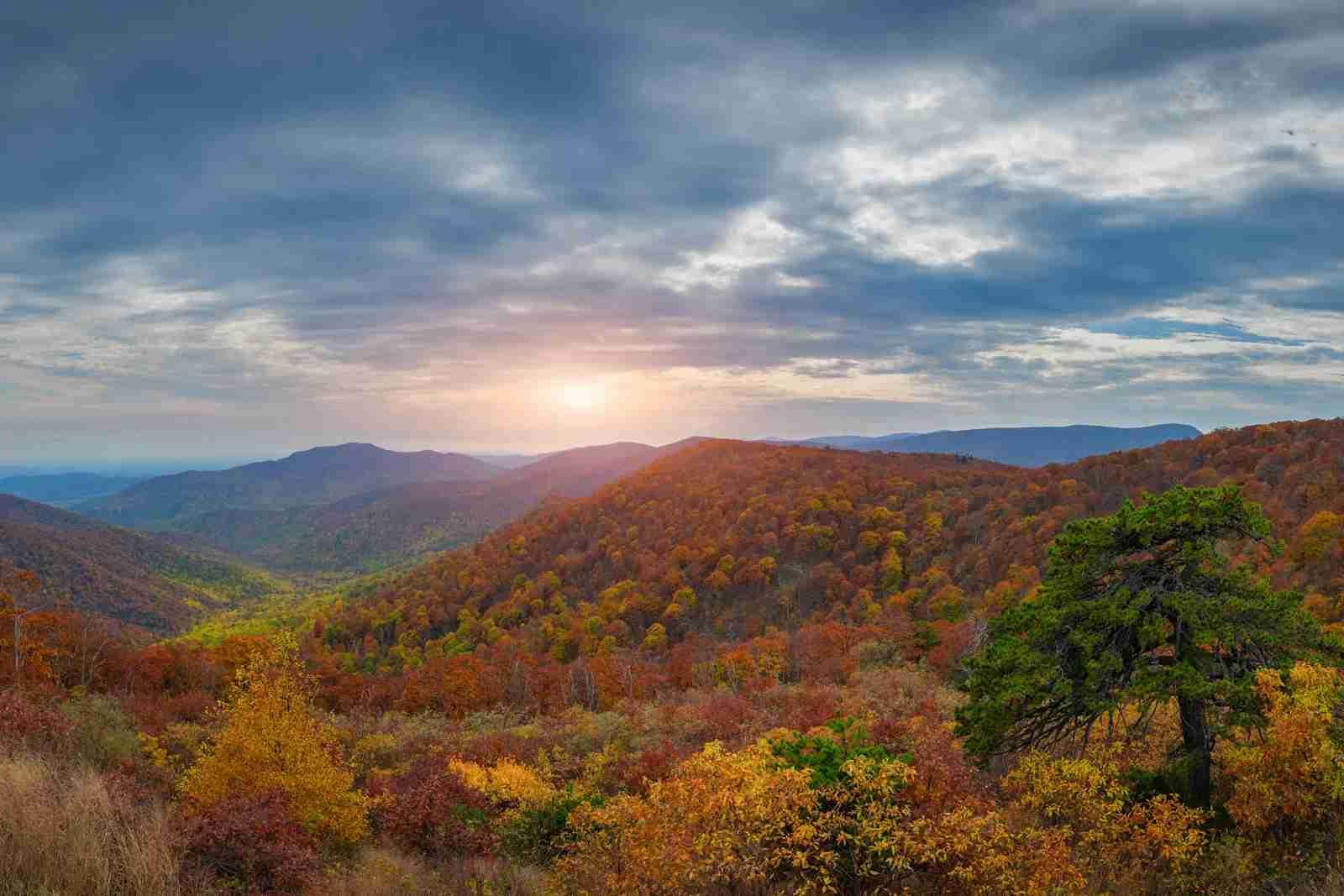 Shenandoah National Park. (Photo by Michael/Adobe Stock)
