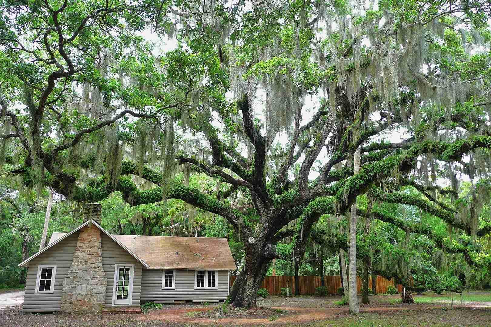 Washington Oaks Gardens State Park Florida