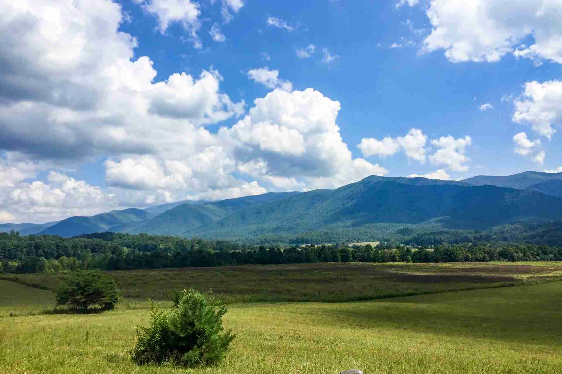 Cades Cove Loop Road (Photo by Caitlin Riddell/The Points Guy)