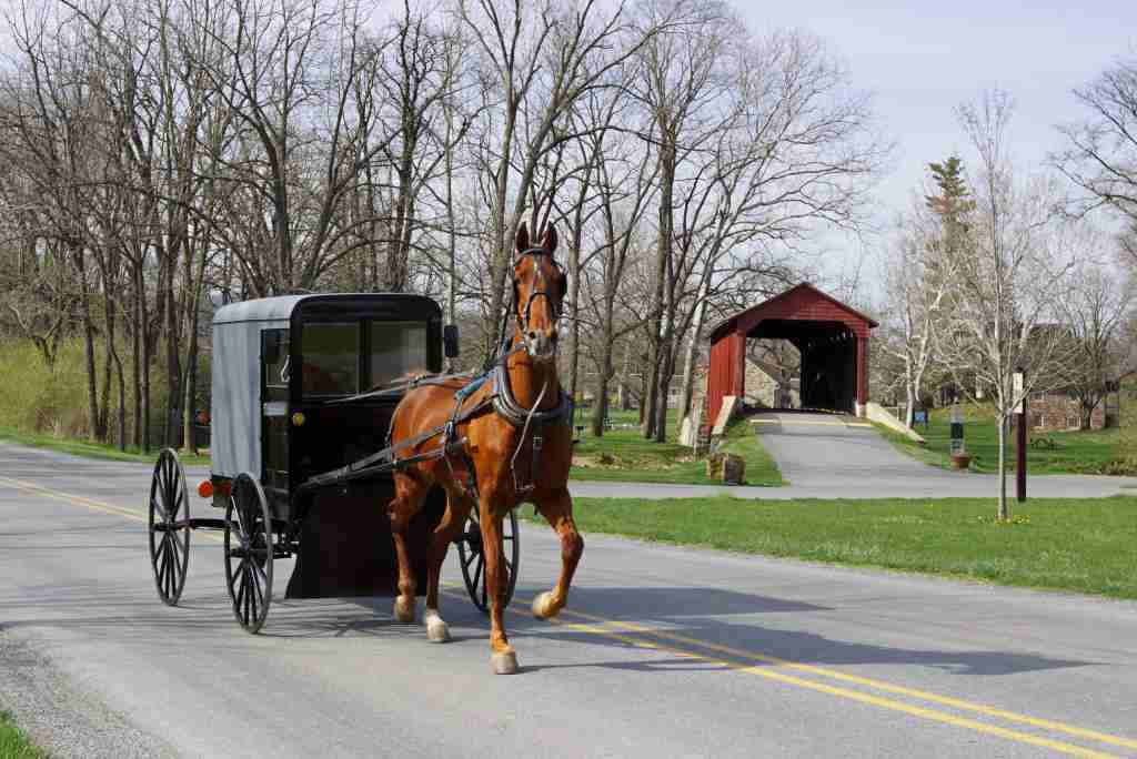 An Amish horse and carriage travels on a rural road in Lancaster County, Pa. (Photo by Delmas Lehman)