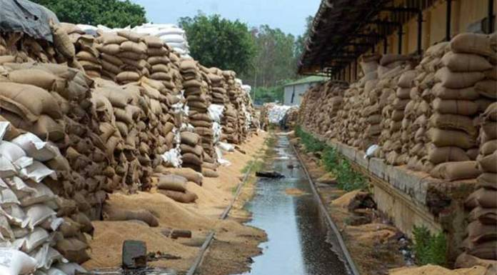 Food Waste in Public Warehouses in Food Scarce India