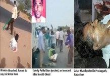 Lynching in Modern India: The Dark Years of Cow Terrorism