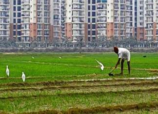 The concerns of the Indian agrarian sector