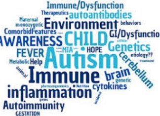 Air pollution increases autism risk in children, says Study