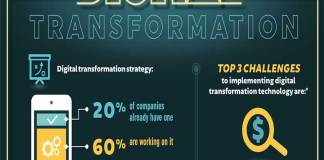 global strategic cost transformation leader