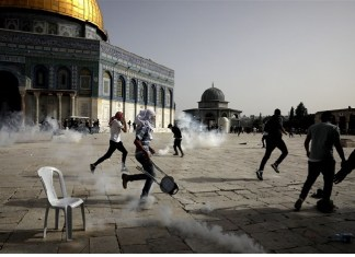 Parliamentarians, Artists and Intellectuals Denounce Israeli Atrocities against Palestinians the policy times