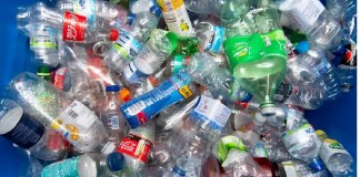 THE PLASTIC PARADOX AND THE WORLD ENVIRONMENT DAY