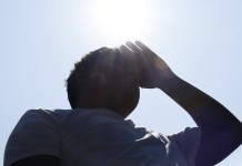 Severe heat waves in India to impact health, agriculture and economy