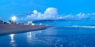 Two more Indian beaches get coveted 'Blue Flag' tag