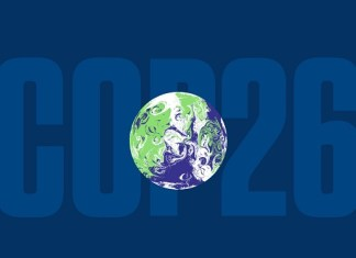 Beyond coal: The COP26 climate summit aims to put an end to deforestation