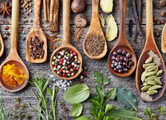 India, Croatia to collaborate for academic research and competency building in traditional medicine systems