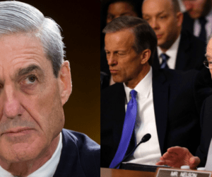 congress protects mueller