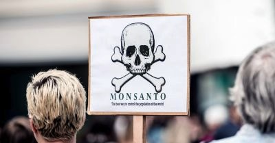 MONSANTO ON TRIAL AGAIN