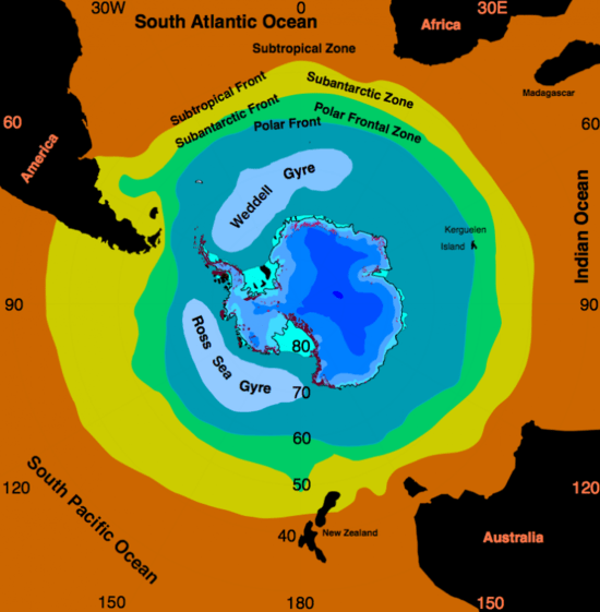Location of the Weddell Gyre in the Weddell Sea.