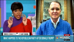Epic! MSNBC's Tiffany Cross decimates Republican on what the GOP stands for