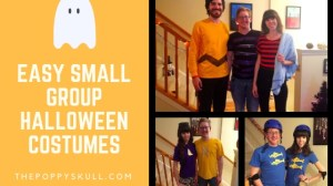 Easy Small Group Halloween Costumes-thepoppyskull.com