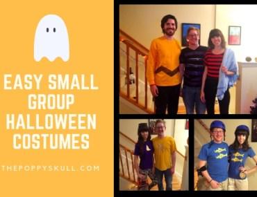 Easy Small Group Halloween Costumes-thepoppyskull.com