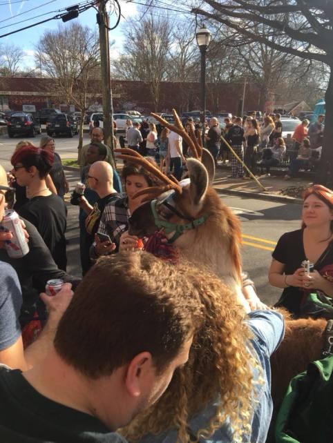 2018 Llama Pub Crawl in EAV that drew hundreds of guests. Photo by Leah McClellan.