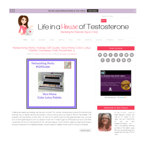 Life in a House of Tesosterone - Custom Deluxe WordPress Blog Design