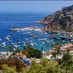 Catalina Island, un tesoro californiano