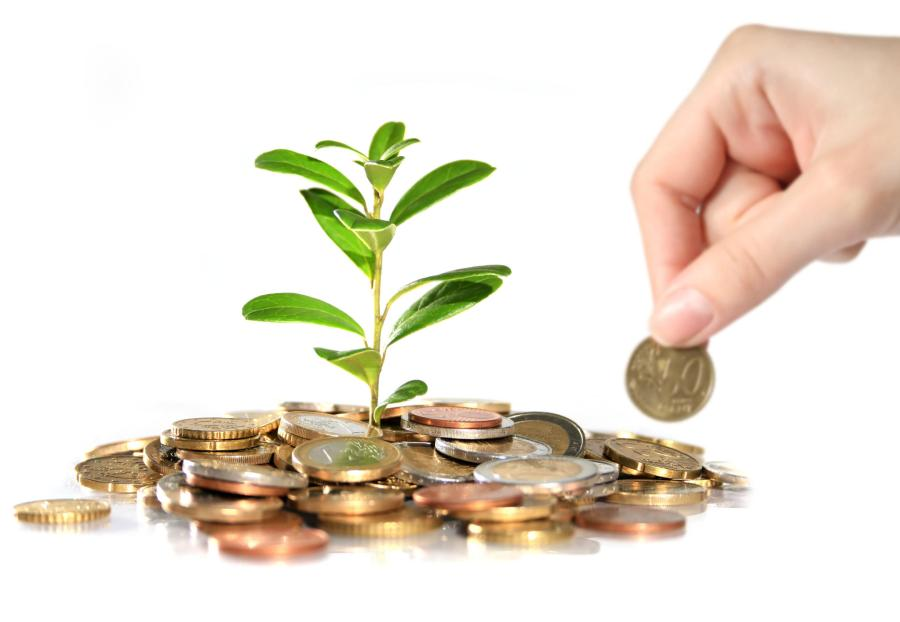 Money and plant. Hand holding euro coin.
