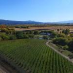 La ruta del vino en Chubut