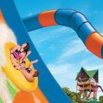 Parques de la familia SeaWorld Parks & Entertainment en Florida anuncian varias novedades para 2019