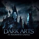 Algo nuevo en The Wizarding World of Harry Potter