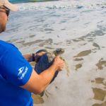SeaWorld Orlando agrega nuevos lugares para los fines de semana de Inside Look