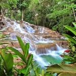 Explore las variadas atracciones naturales de Jamaica