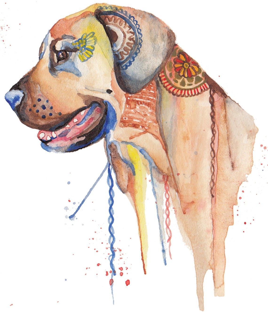 Watercolor Dog | The Postman's Knock