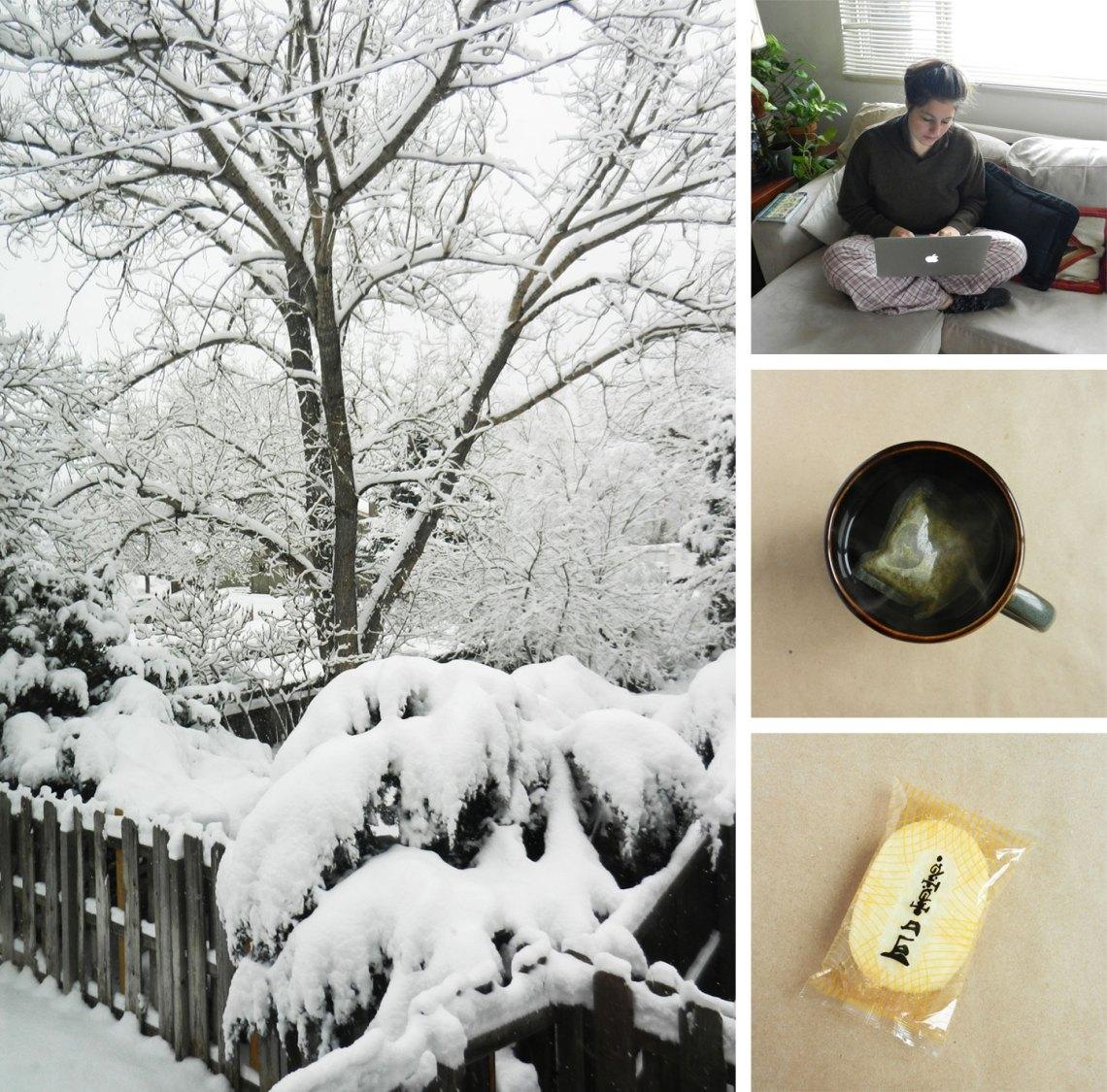 Boulder, CO Winter Wonderland | The Postman's Knock