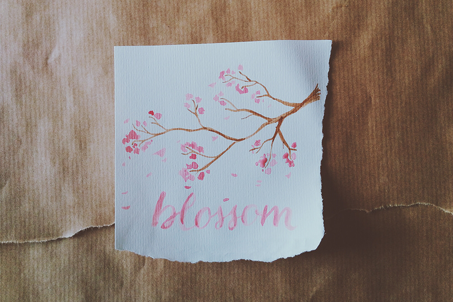 Blossom by Posta Via Gufo | The Postman's Knock