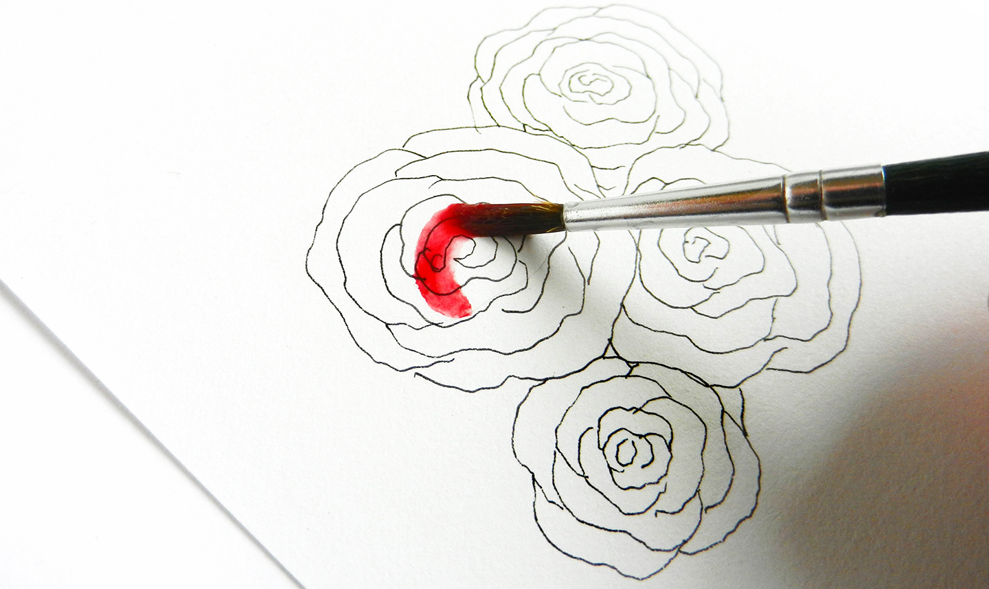 How to Draw Roses | The Postman's Knock