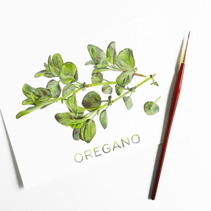Printable Artwork: Oregano {Watercolor} | The Postman's Knock