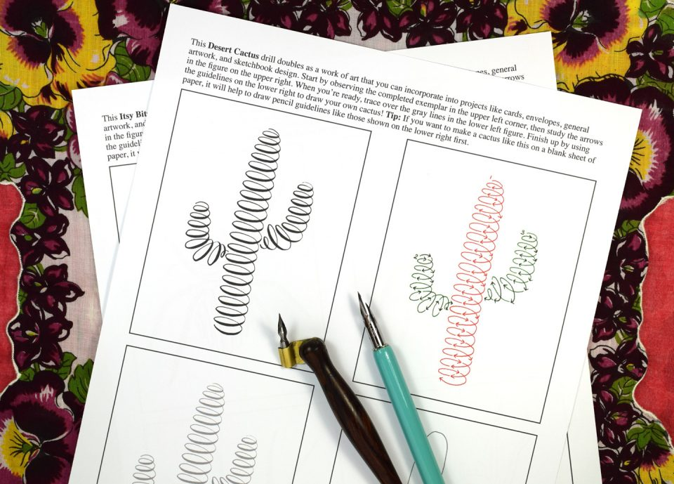 Not Your Average Calligraphy Drills: Garden Edition   The Postman's Knock