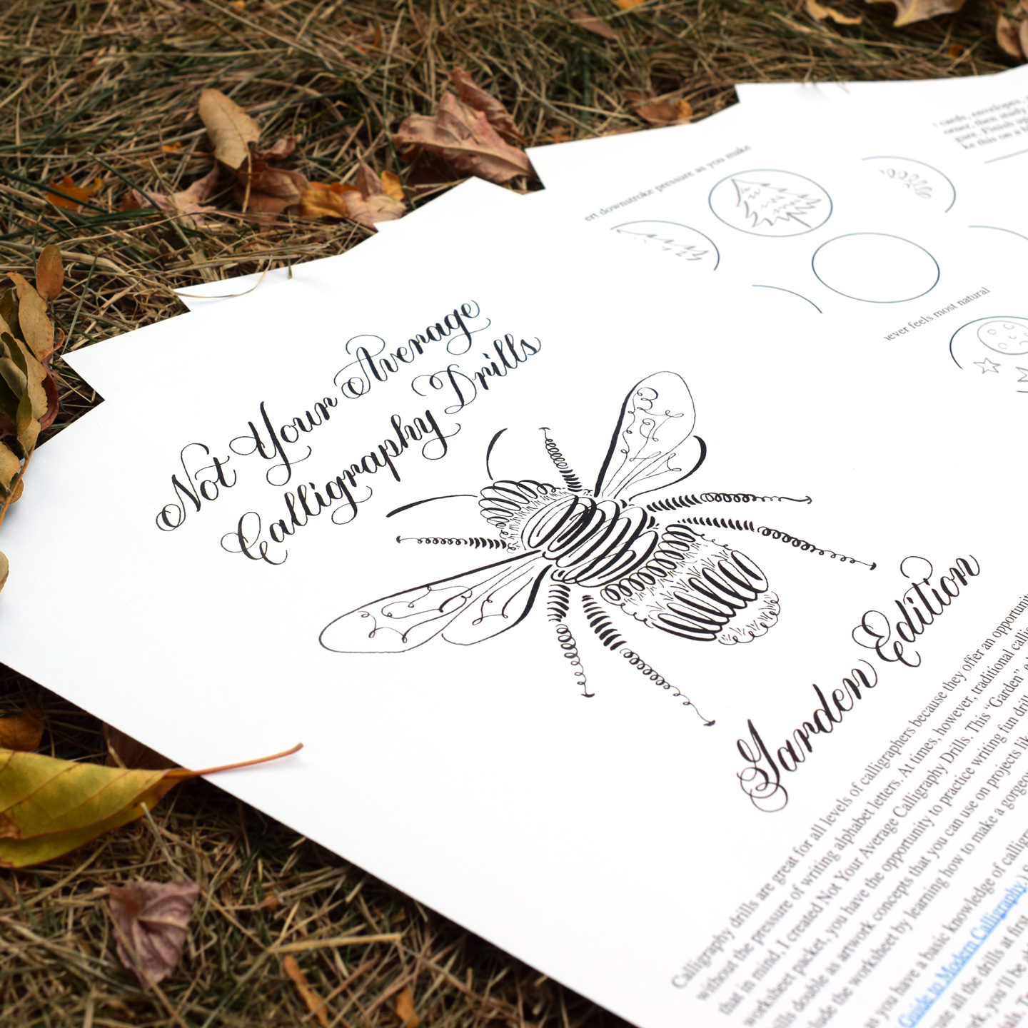 Not Your Average Calligraphy Drills Garden Edition