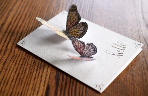 Small and Tiny Lace Butterflies on a Blank Card | The Postman's Knock