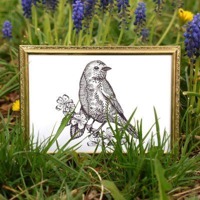 Printable Henna Bluebird Illustration + Card Tutorial
