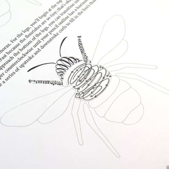 In the packet, you'll learn how to create a flourished bee with step-by-step instructions.