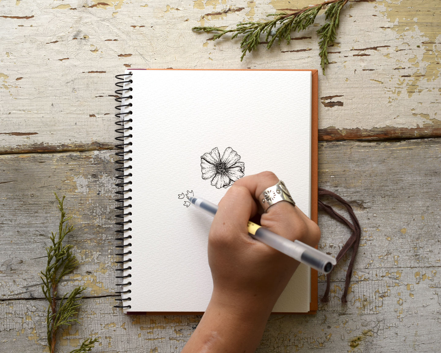 How to Draw Flowers Part 1: Geraniums – The Postman's Knock
