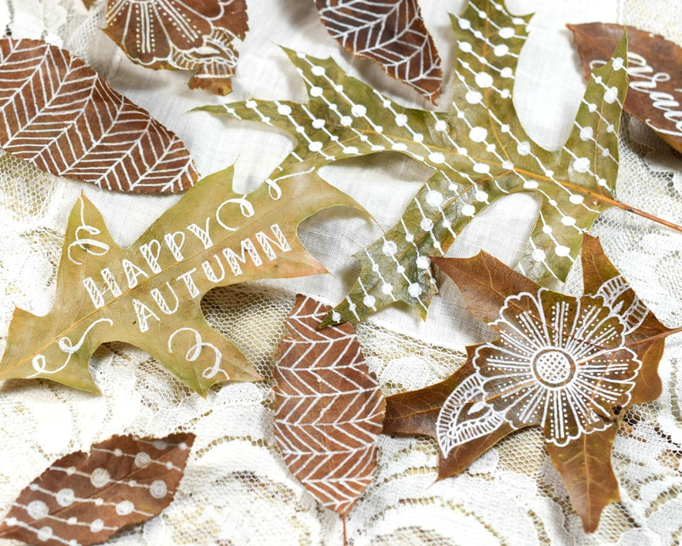 Group of Decorated Autumn Leaves